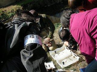 2012.3.3nogawa-5.jpg