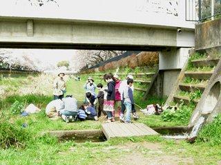 細田橋3.23調査.jpg